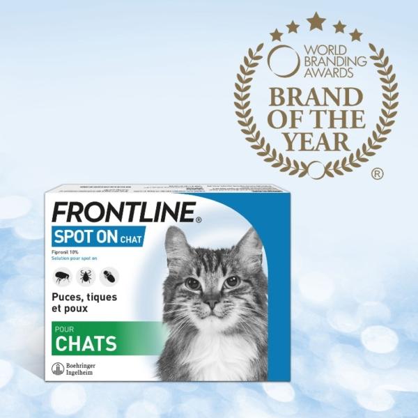 Frontline Spot On - Chat - Elue marque de l'année