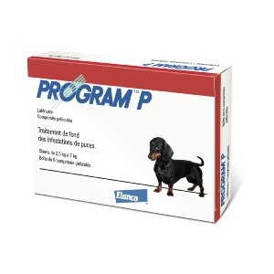 Program P Chien - ELANCO
