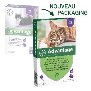 Advantage 80 BAYER