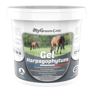CDN Horse - MyGroom Care - Gel Harpagophytum