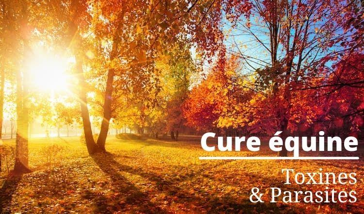 202110 - Cure équine automne - Toxines et Parasites